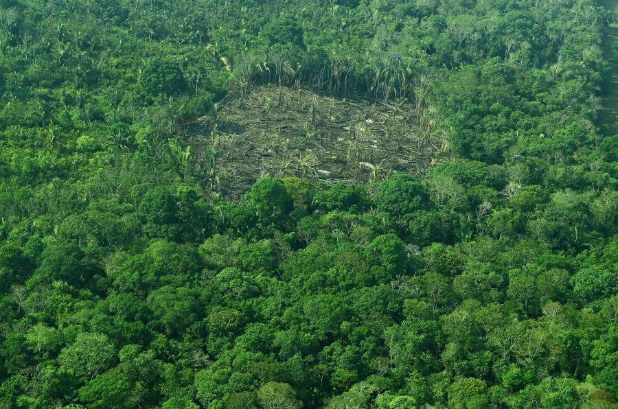 Vista aérea do desmatamento da Amazônia em setembro de