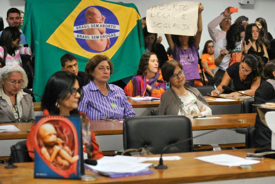 Lenise Garcia, presidente do movimento Brasil sem Aborto, acredita que o debate deveria ser feito no