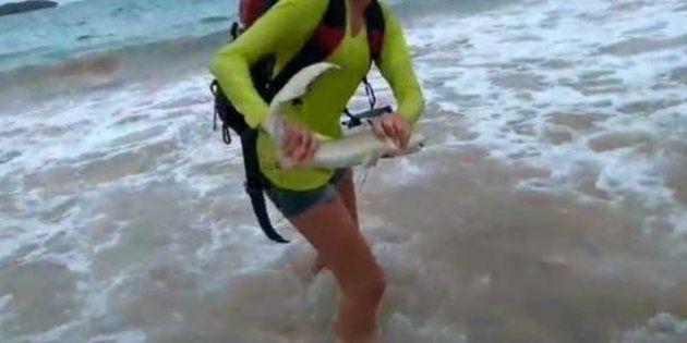 Ela tirou uma selfie com um tubarão, foi mordida, e agora terá que pagar multa de R$ 10