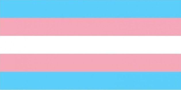 Brasil é um dos países que mais matam travestis e