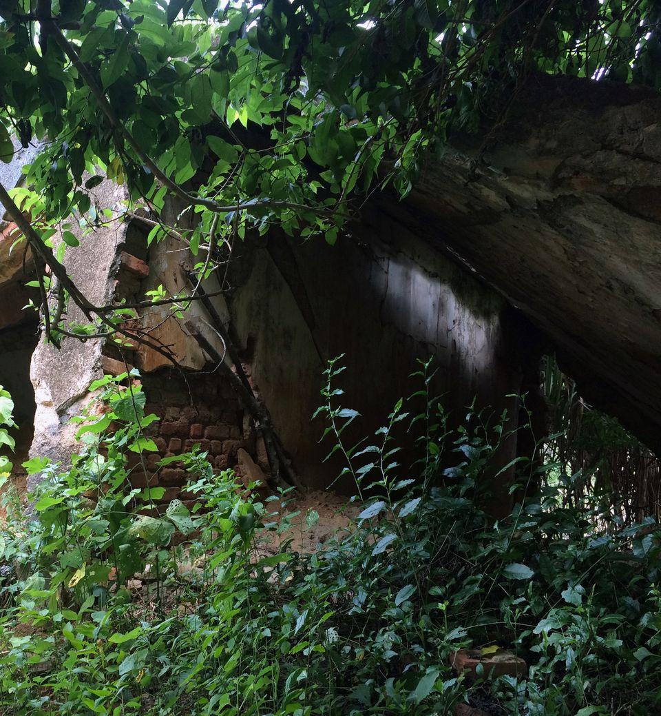 Watu Morreu: A transformação da vida às margens do rio Doce após a tragédia de