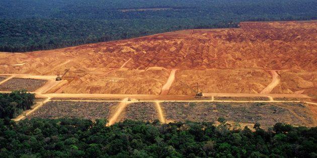Mais de 2 mil imóveis irregulares em terras públicas na Amazônia podem ser legalizados por 'MP da