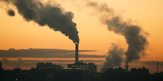 Poluição é um dos temas de Biologia mais cobrados pelo