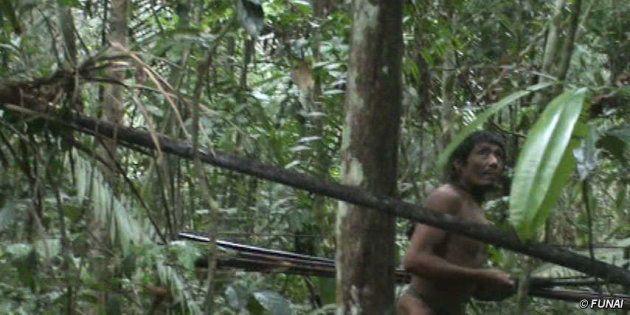 Índio isolado na Amazônia avistado pela Funai em