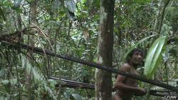 'Garimpeiros se gabaram das mortes', diz ONG sobre denúncia de massacre de