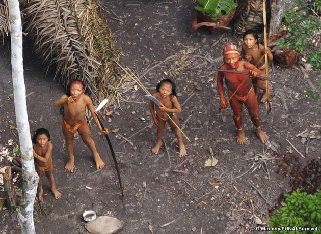 Tribo isolada da Amazônia brasileira, imagem aérea em