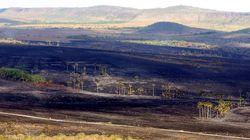 MPF instaura inquérito para investigar se incêndio na Chapada foi
