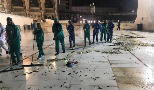 Arabie saoudite: Des cafards volants envahissent La