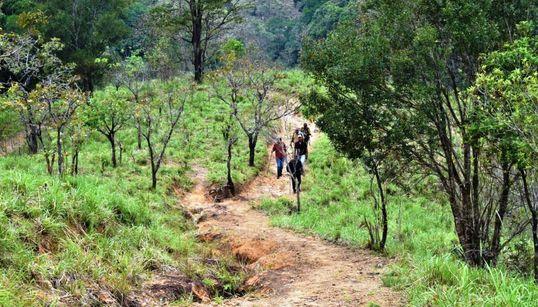 After Sabarimala, Women Head to Agasthyarkoodam In Kerala Amid Planned