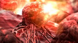 'Bad Luck' Can Cause Cancer, Says John Hopkins