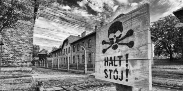 Auschwitz: Memories Of Horror In