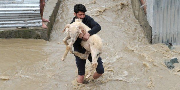 A resident carries a sheep through waters as they rise in a neighbourhood of Srinagar on March 30, 2015....