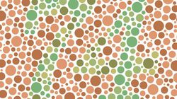This Firm Has Fooled Colour Blindness With Their