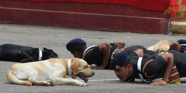 Indian army commandos with their dogs perform during a show at a parade ground in Secunderabad, the twin...
