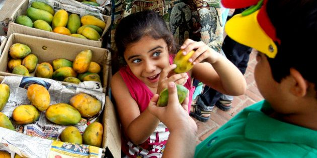 An Indian girl shows a mango to her brother at the annual mango festival in New Delhi, India, Saturday,...
