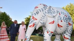 Britain's Prince Is Raising Funds To Save Asian Elephants In