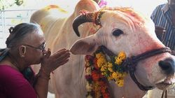 'Killing Or Smuggling A Cow Is Equivalent To Raping A Hindu Girl': RSS