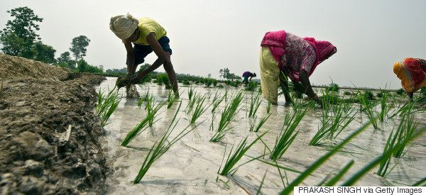 This Modi Government Initiative Can Be A Game Changer For India's Farm