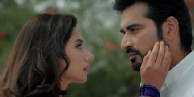 Maharashtra Navnirman Sena Has Barred Pakistani Film 'Bin Roye' From Being Released In