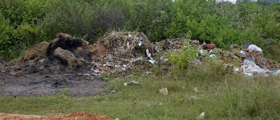 Garbage City: Mysore's Makeshift Dump