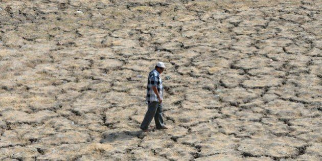 This photo taken on May 28, 2015 shows an Indian man walking across the dried-out bed of Lake Ahmad Sar...