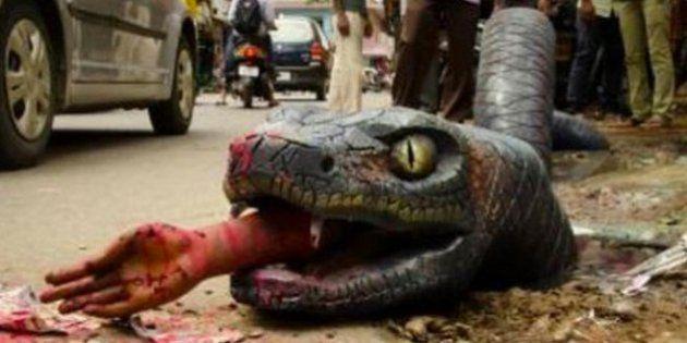 Giant, Fake Anaconda In Muddy Pothole Greets Bengaluru