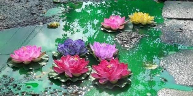 'Lotus Blossoms' In Bengaluru Street Before Municipal Elections Bring Attention To