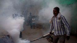 Dengue Outbreak: 29-Year-Old Woman Dies In Delhi, Angry Health Minister Summons Delhi