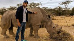 Cricketer Rohit Sharma Is In Kenya, Saving Wild