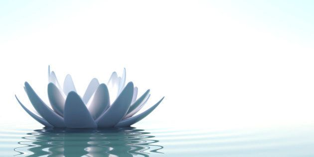 A Zen lotus flower in clam water on white
