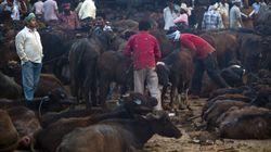 Beef Ban: Commerce Minister Nirmala Sitharaman Counters Nitish Kumar's Jab At