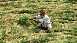 Providing Farmers Psychological Treatment Is No Less Than Calling Them 'Mad', Says Ashok