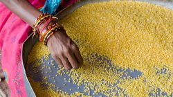Central Govt Recovers 36,000 Tonnes Of Pulses From Hoarders Across
