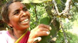 Dilli Haat Will Celebrate The 'Organic' Efforts Of Over 500 Women Farmers This