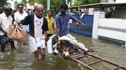 Tamil Nadu Rains: Death Toll Rises To 184, More Rains