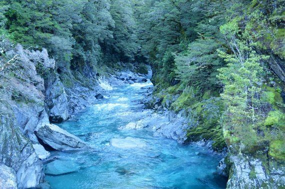 5 Not-So-Obvious Treasures To Discover In New Zealand's South