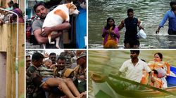 Chennai Grapples With Aftermath Of One Of Its Worst Floods In