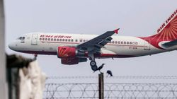 Stray Dog Halts Air India Flight In Amritsar, Narrow Escape For 171 Passengers On