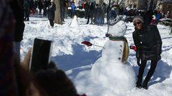 PHOTOS: SNOWPOCALYPSE In The