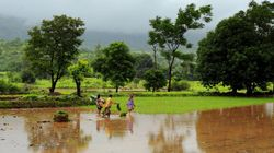 IMD Forecasts ''Above Normal'' Monsoon This