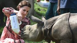 PHOTOS: Kate And William's Day Out At Kaziranga National