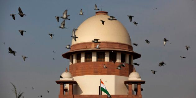 Pigeons fly past the dome of India's Supreme Court building in New Delhi, India, Tuesday, Feb. 2, 2016....