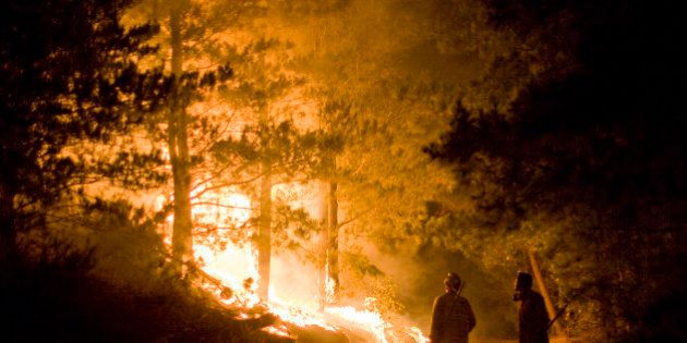 Big Sur, California. Flames move through trees and firefighters wait and