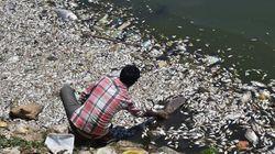 Mumbai, Bengaluru Have Least 'Sustainable Urban Systems':