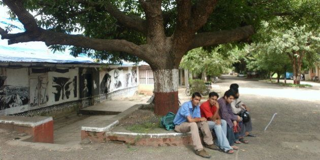 INDIA - SEPTEMBER 08: View of the Wisdom Tree at Film and Television Institute of India ( FTII) in Pune,...