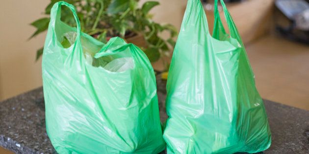 You Will Have To Pay A Hefty Fine If You Carry Plastic Shopping Bags In