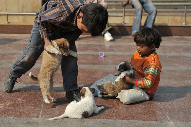 Kendriya Vidyalaya Will Now Teach Its Students To Be Kind To