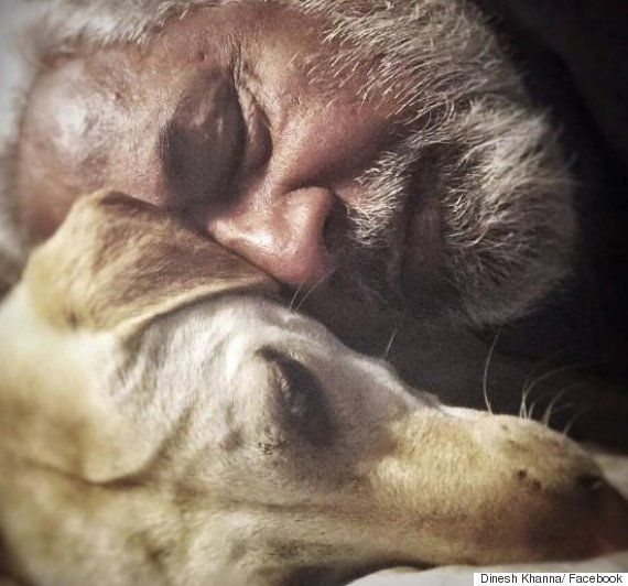 How Facebook Helped This Delhi Photographer Find His Lost Dog Over A Month