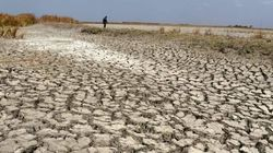 India To Witness More Frequent Drought Years In Future: