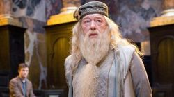 This Indian Actor Had A Shot At Playing Dumbledore In The 'Harry Potter'